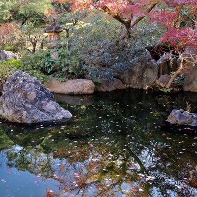 新人講師は見た!『しぐさ美人ビューティーウォークリサイタル in 東京』其の一の記事に添付されている画像