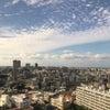 沖縄鑑定会 1日目 無事終了の画像
