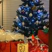 我が家のクリスマスパーティー☆