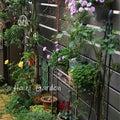 #花壇の画像