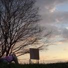 13日の夕方散歩でヌートリアとカワセミに逢えたよ。の記事より