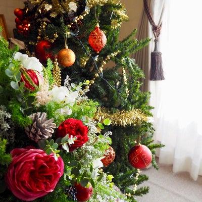 12月花会前編の記事に添付されている画像