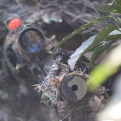 P90 陽炎6型改 森林フィールドでの設定の記事に添付されている画像