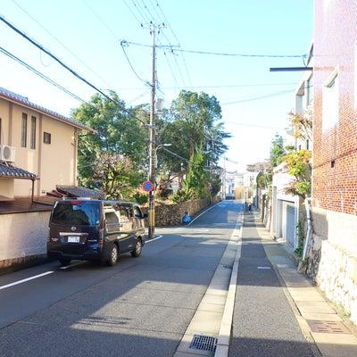 神戸市灘区の猫ちゃんの記事に添付されている画像