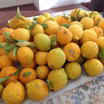 恒例のレモン仕事の記事に添付されている画像