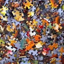 幼児の記憶パワー!!パズルブームその後の記事に添付されている画像
