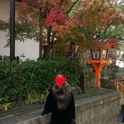 京都観光とお食事の記事に添付されている画像