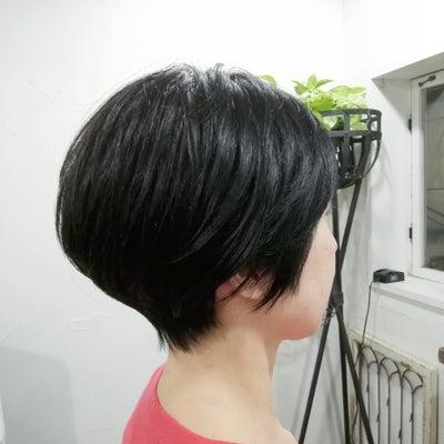くせ毛を活かして波瑠さん風冬ショート♪の記事に添付されている画像