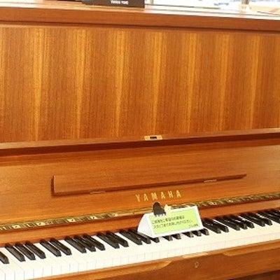 ピアノ弾いてみました(ミセスマキコのプラチナ相談室)の記事に添付されている画像