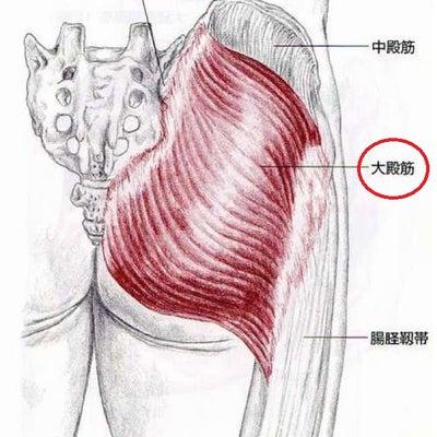 かかとの痛みは、お尻の筋肉が原因でした。の記事に添付されている画像