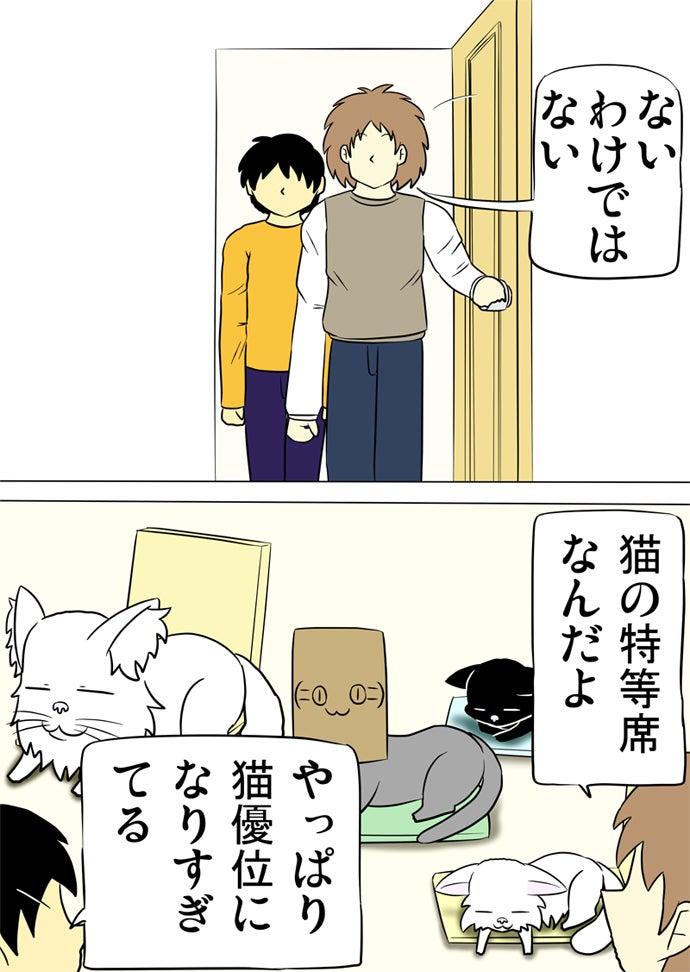 ドアを開いて椅子や座布団で寛ぐ猫たちを眺める少年と男性