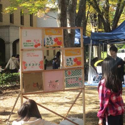 東京大学「駒場祭」2018観覧記【その11:その他屋外の風景】の記事に添付されている画像