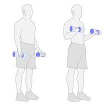 12月18日(火)腕のトレーニングの記事に添付されている画像