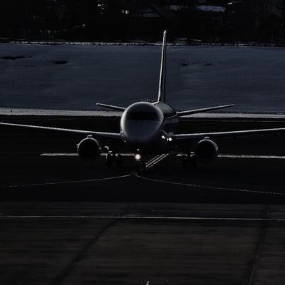 エアバス A320-232 タイガーエア台湾 ( いわて花巻空港にて )の記事に添付されている画像