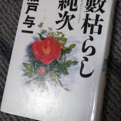 2018/12/16  59  船戸与一「藪枯らし純次」徳間書店  2008年1の記事に添付されている画像
