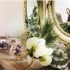 【完売】胡蝶蘭と苔玉のお正月飾りの画像