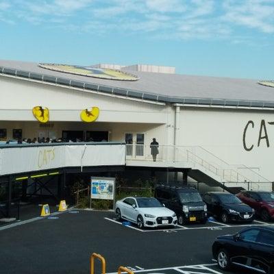 CATS~大井町~の記事に添付されている画像
