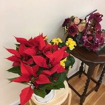 今日のお花たちの記事に添付されている画像