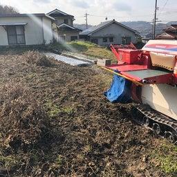 画像 無農薬大豆の収穫完了。ネットショップにて販売 開始しました! の記事より 4つ目