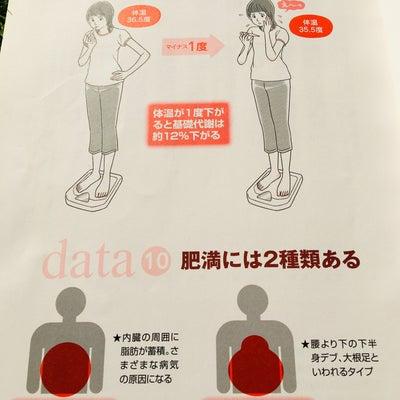 体温の重要性の記事に添付されている画像