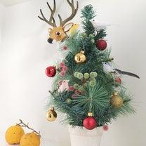 ダイエッターの難関~クリスマス攻略法の記事に添付されている画像