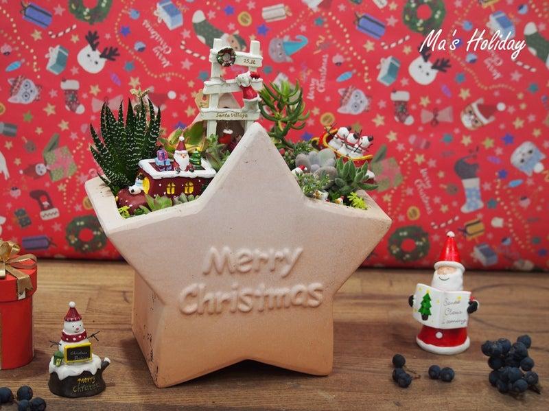 クリスマス多肉アレンジ