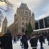 ロンドンのクリスマスライトの画像
