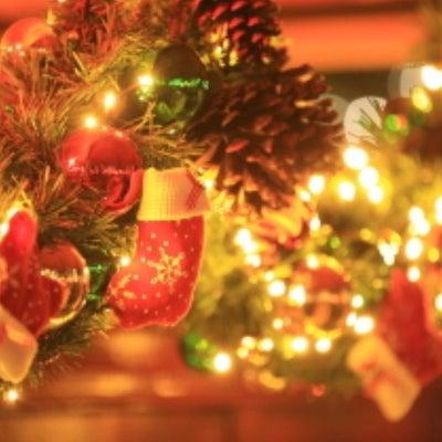 甘えたクリスマス。(NS)の記事に添付されている画像
