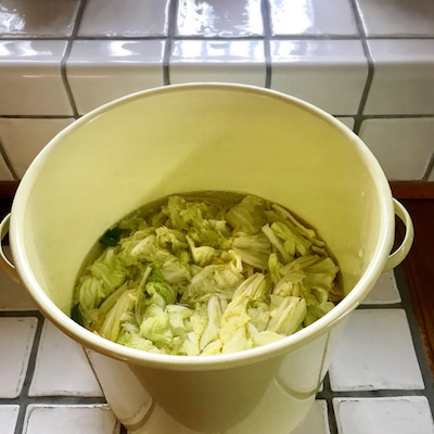 冬も乳酸発酵やってます♪の記事に添付されている画像