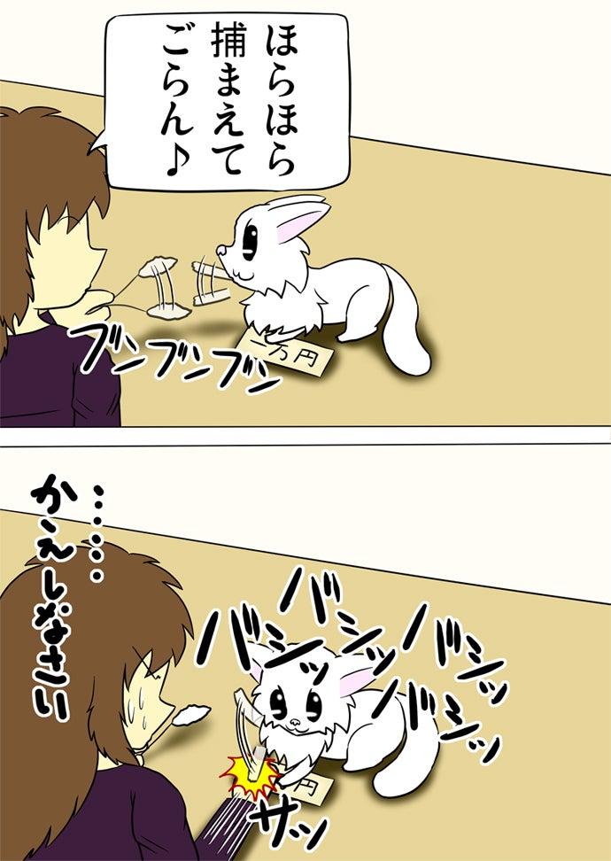 左手で持った白い猫じゃらしを振って白い子猫の気をそらして一万円札をとろうとした女性の右手を右前脚で何度もたたく白い子猫