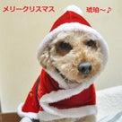☆~メリークリスマス~☆の記事より