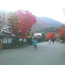20181130 平成最後の紅葉♪嵐山♪6:天龍寺♪紅葉の道(方丈まで)♪の記事に添付されている画像
