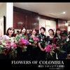 Flowers of COLOMBIAへの画像