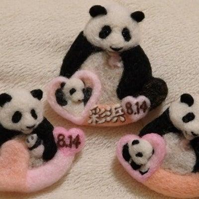 羊毛パンダたちの記事に添付されている画像