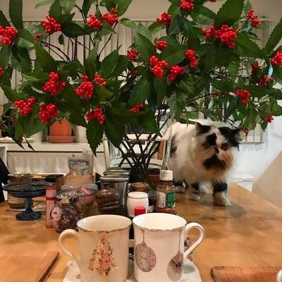 クリスマスは家族の忘年会wの記事に添付されている画像