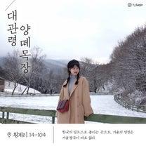 江原道、冬の名所お勧めスポット!!の記事に添付されている画像