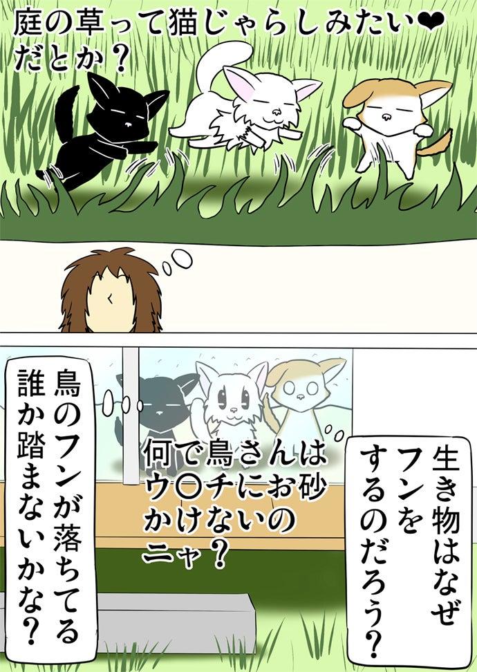 窓の外の庭を眺める黒い子猫と白い子猫とスコティッシュフォールド猫と庭の草に戯れる三匹の猫を創造する女性