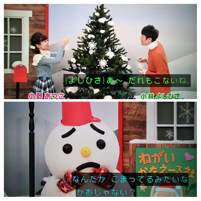 今日見たTV:2018年12月26日(水)~おかいつ冬特集(3):ピーマンの ...