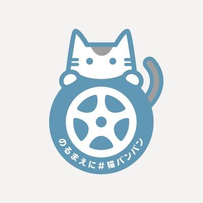 猫バンバン☆ほんのひと手間で命が救えるかもしれません!の記事に添付されている画像