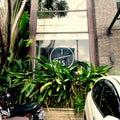 #ジャカルタ駐在妻の画像