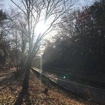 恒例 京都ロング散歩の記事に添付されている画像