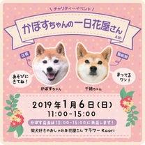 明日!かぼすちゃんの一日花屋さん☆11時~15時開催致しますの記事に添付されている画像