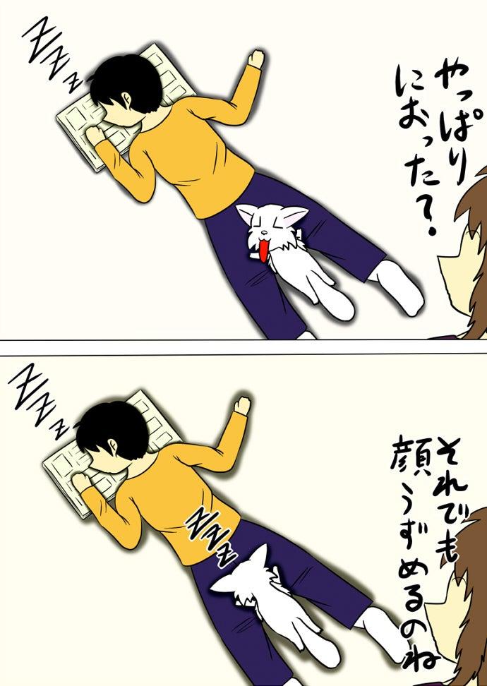 床に漫画雑誌を広げて足を広げてうつぶせに寝る少年の尻から顔を上げてフレーメン反応を起こして再び顔をうずめて寝る白い子猫を呆れて眺める女性