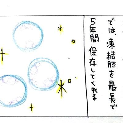 凍結胚は5年の命①の記事に添付されている画像