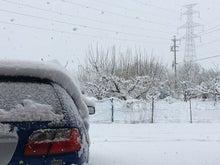181229雪