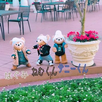 公園デビュー☆の記事に添付されている画像
