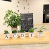 今年も本当にありがとうございました!江別 野幌 高砂 美容室 メンズカット A cote アコテの画像