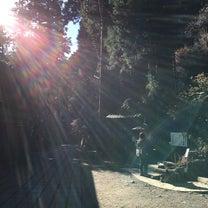 新春第一弾!!  開運!!光の写真館(^O^)の記事に添付されている画像
