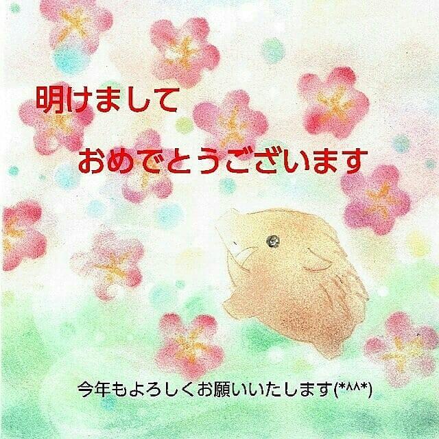 明けましておめでとうございます(*^^*)の記事より