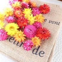 育てて作る!ドライフラワーに最適な花たちの記事に添付されている画像